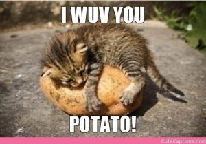 wuv u potato